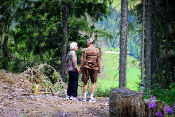 Elderly couple holding hands enjoying the woodland view