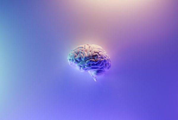 brain on a coloured backgroud